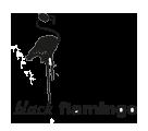Black Flamingo Bar